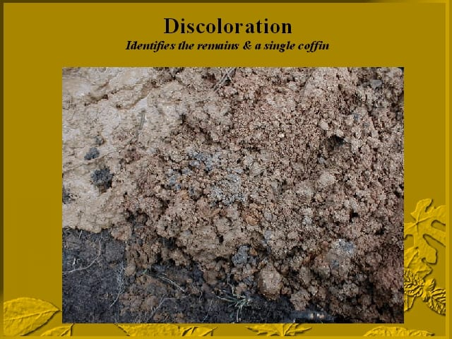 Soil color indicates excavation remains